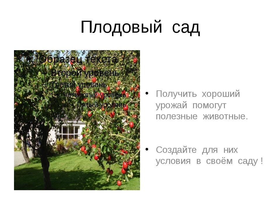 Плодовый сад Получить хороший урожай помогут полезные животные. Создайте для...