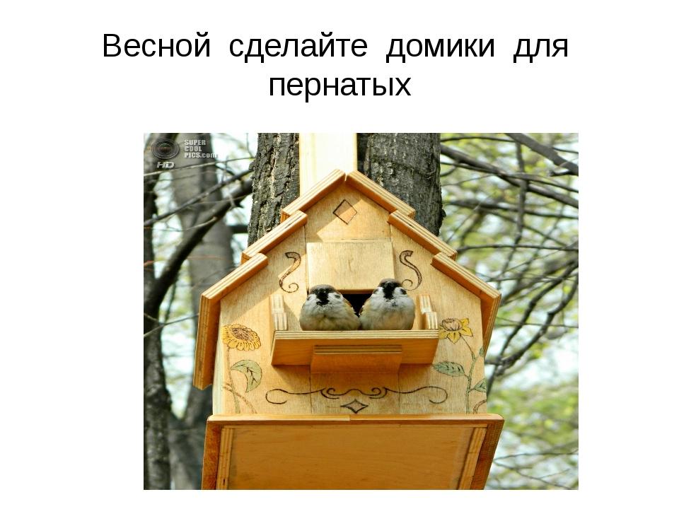 Весной сделайте домики для пернатых