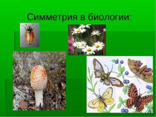 Симметрия в биологии: