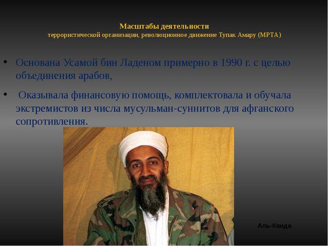 Масштабы деятельности террористической организации, революционное движение Ту...
