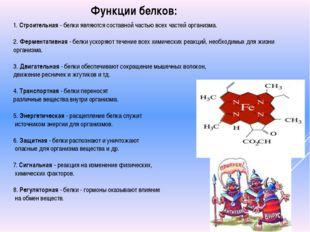 1. Строительная - белки являются составной частью всех частей организма. 2. Ф