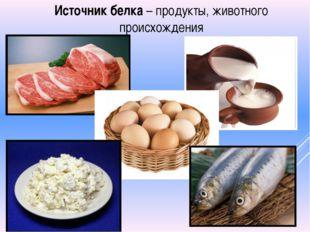 Источник белка – продукты, животного происхождения