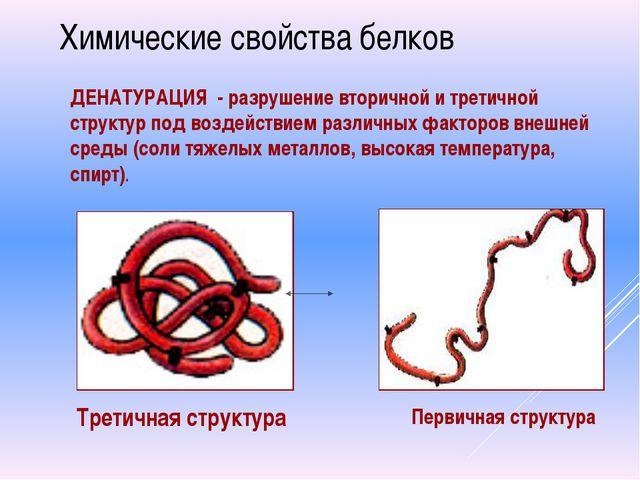 Химические свойства белков ДЕНАТУРАЦИЯ - разрушение вторичной и третичной стр...
