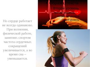 Но сердце работает не всегда одинаково. При волнении, физической работе, зан