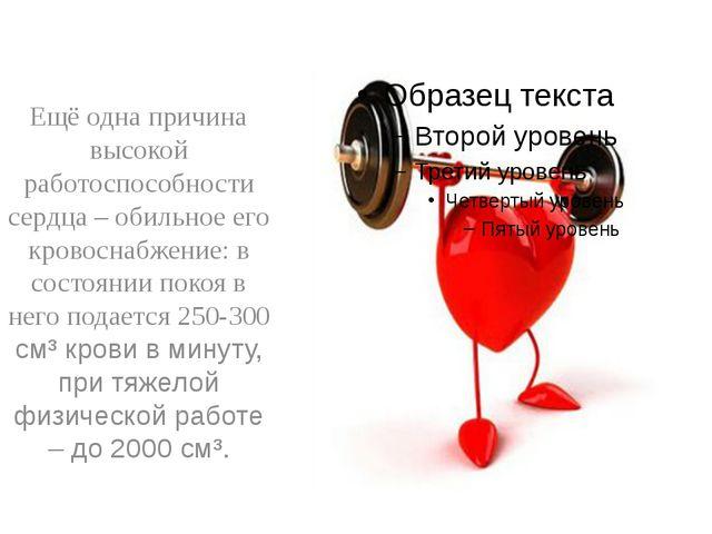 Ещё одна причина высокой работоспособности сердца – обильное его кровоснабже...