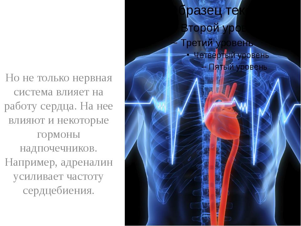 Но не только нервная система влияет на работу сердца. На нее влияют и некото...