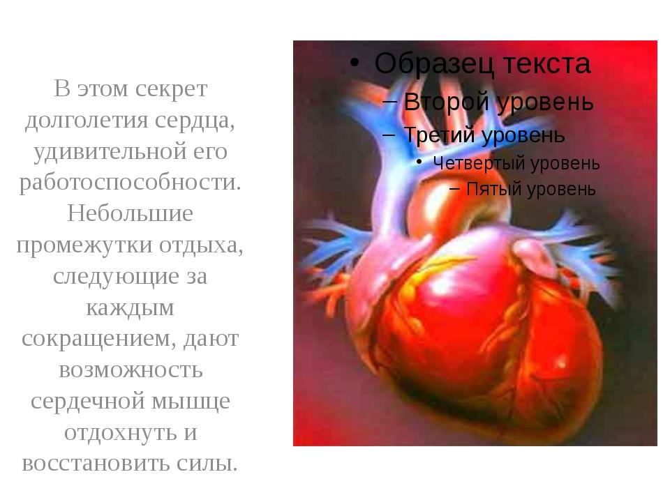 В этом секрет долголетия сердца, удивительной его работоспособности. Небольш...
