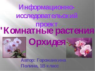 """Информационно-исследовательский проект """"Комнатные растения . Орхидея"""" Автор:"""