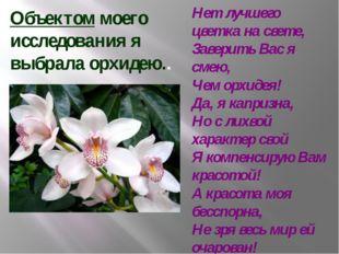 Объектом моего исследования я выбрала орхидею.. Нет лучшего цветка на свете,