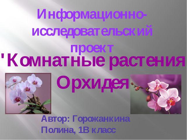 """Информационно-исследовательский проект """"Комнатные растения . Орхидея"""" Автор:..."""