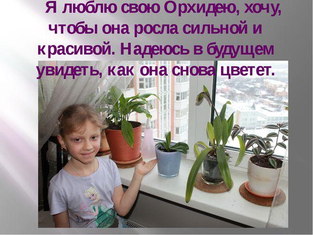 Я люблю свою Орхидею, хочу, чтобы она росла сильной и красивой. Надеюсь в бу...