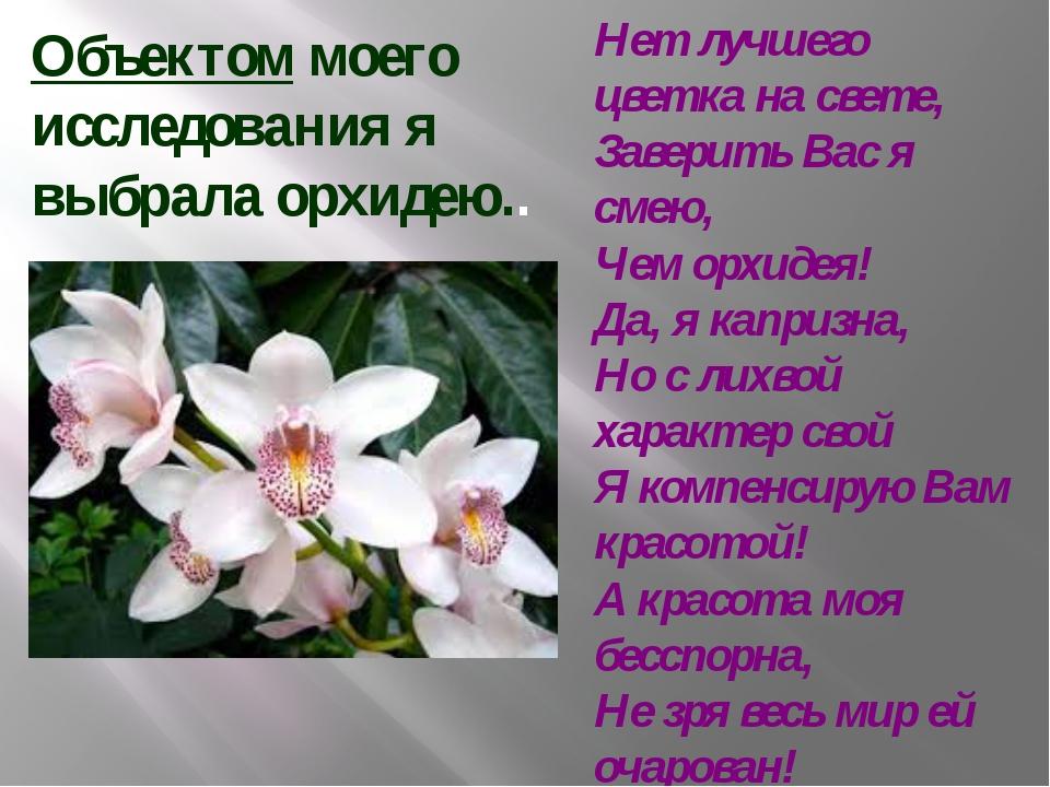 Объектом моего исследования я выбрала орхидею.. Нет лучшего цветка на свете,...
