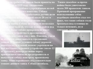 Собаки-истребители танков были приняты на вооружение в 1935 году. специально