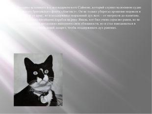 Необходимо вспомнить и о легендарном коте Саймоне, который служил на военном
