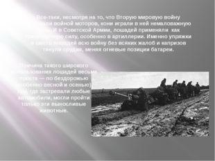 Все-таки, несмотря на то, что Вторую мировую войну называли войной моторов, к