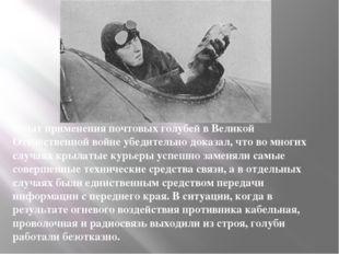 Опыт применения почтовых голубей в Великой Отечественной войне убедительно до