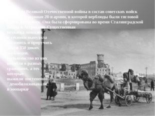 Во время Великой Отечественной войны в состав советских войск входила резервн