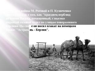 """Ветераны войны М. Роговой и П. Кузнеченко рассказывали о том, как """"красавец в"""