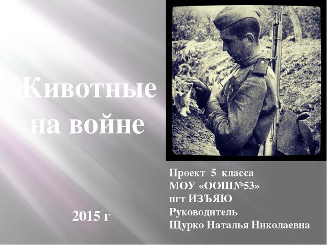 Животные на войне Проект 5 класса МОУ «ООШ№53» пгт ИЗЪЯЮ Руководитель Щурко Н...