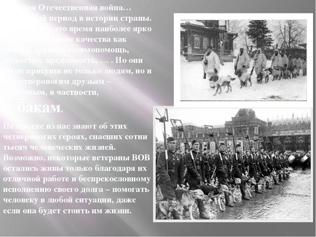 Великая Отечественная война… Страшный период в истории страны. Но именно в эт...