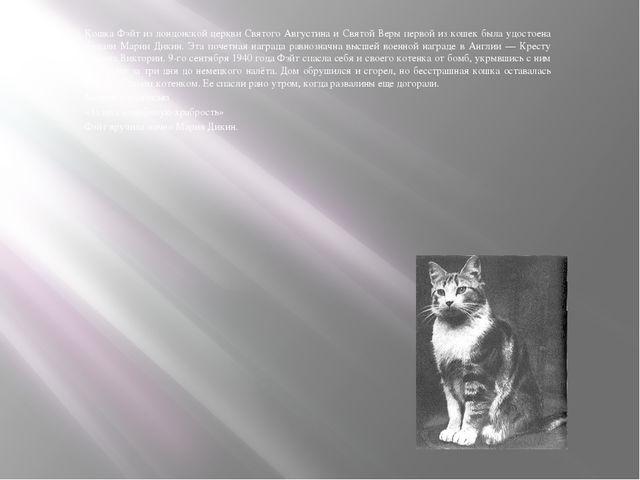 Кошка Фэйт из лондонской церкви Святого Августина и Святой Веры первой из ко...