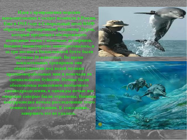 Идея о превращении морских млекопитающих в солдат возникла в России. Еще в 19...
