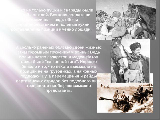 Однако не только пушки и снаряды были заботой лошадей. Без коня солдата не на...