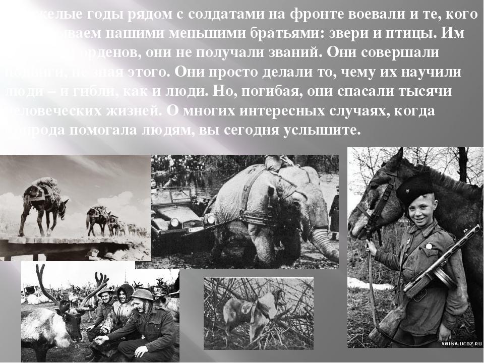 В тяжелые годы рядом с солдатами на фронте воевали и те, кого мы называем наш...