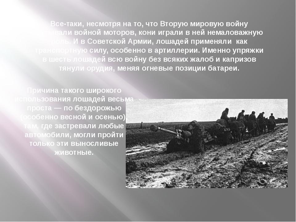 Все-таки, несмотря на то, что Вторую мировую войну называли войной моторов, к...