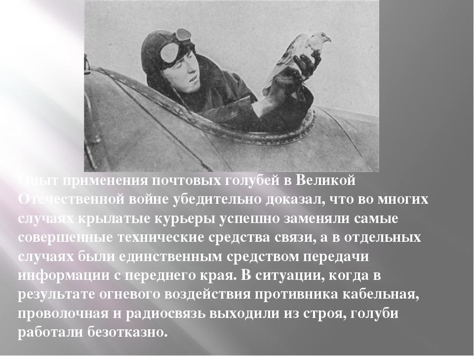 Опыт применения почтовых голубей в Великой Отечественной войне убедительно до...