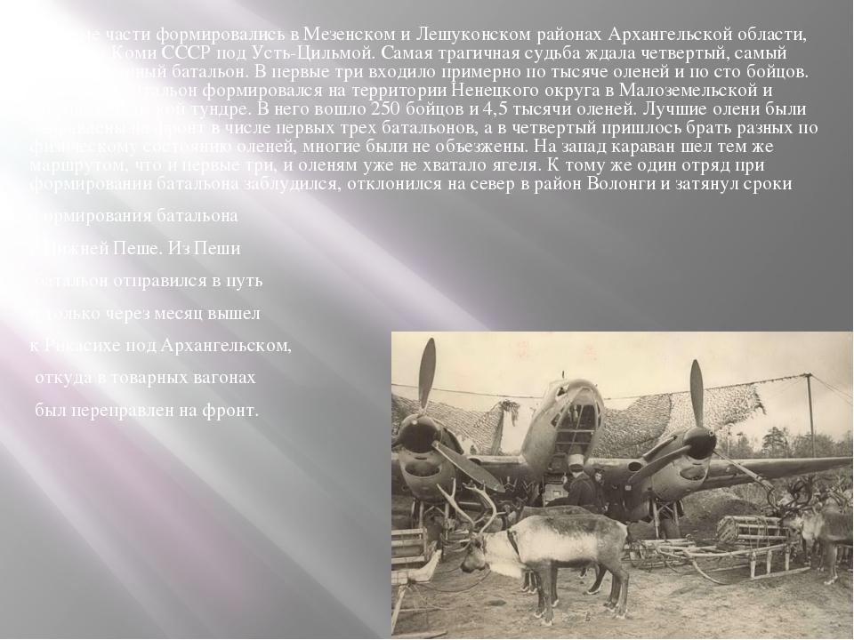 Военные части формировались в Мезенском и Лешуконском районах Архангельской о...