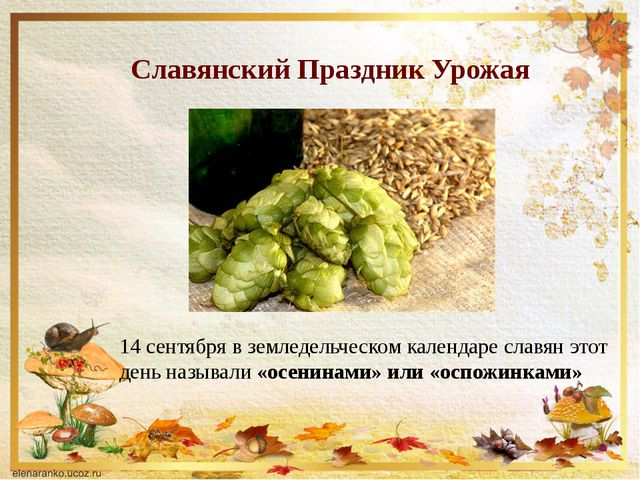 Славянский Праздник Урожая 14 сентябряв земледельческом календаре славян это...