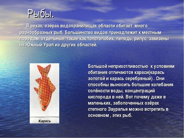 Рыбы. В реках, озёрах водохранилищах области обитает много разнообразных рыб....