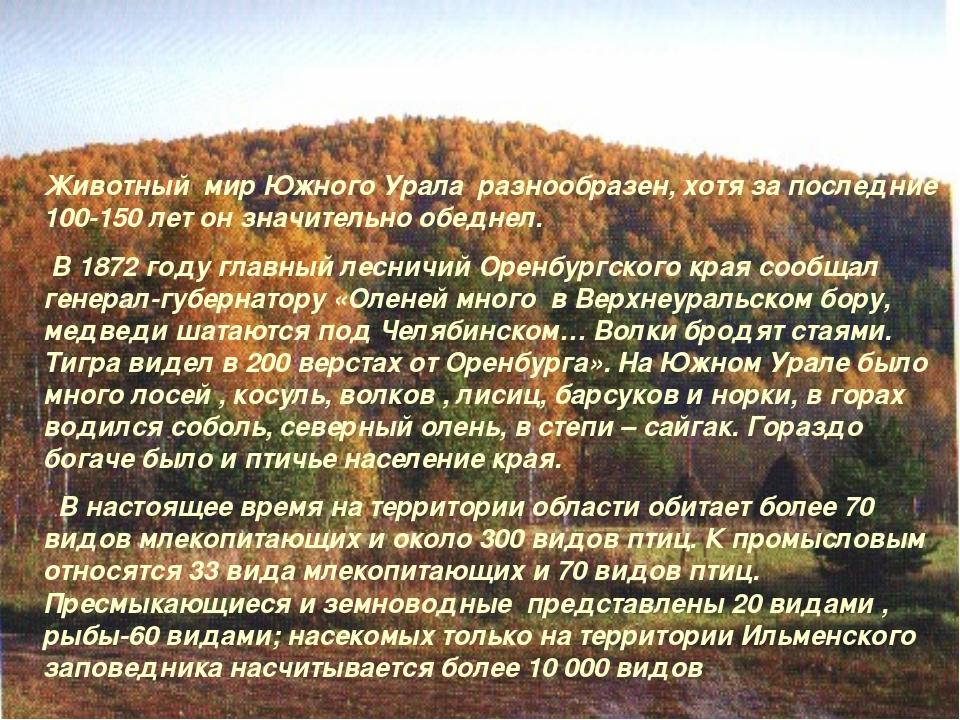 Животный мир Южного Урала разнообразен, хотя за последние 100-150 лет он знач...