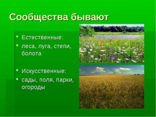 Сообщества бывают Естественные: леса, луга, степи, болота Искусственные: сады