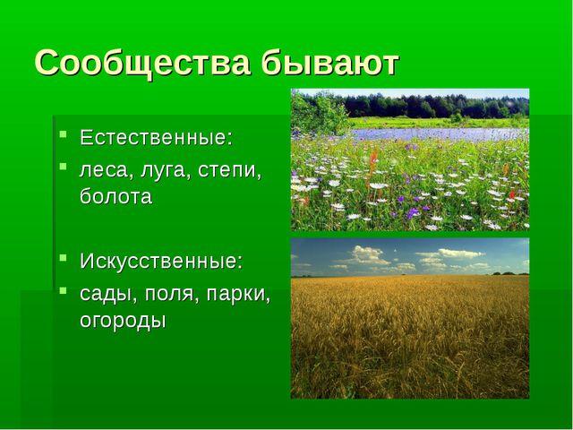 Сообщества бывают Естественные: леса, луга, степи, болота Искусственные: сады...