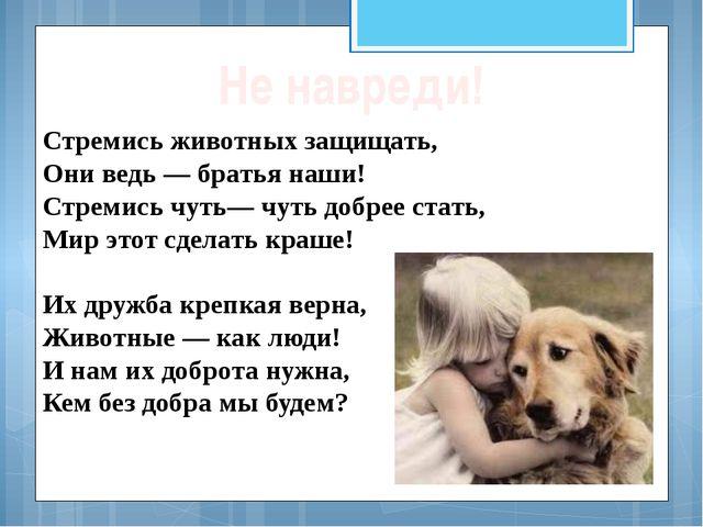 Стремись животных защищать, Они ведь — братья наши! Стремись чуть— чуть добре...