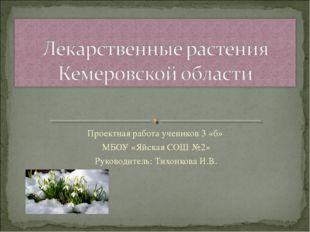 Проектная работа учеников 3 «б» МБОУ «Яйская СОШ №2» Руководитель: Тихонкова