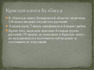 В «Красную книгу Кемеровской области» включены 128 видов высших сосудистых ра