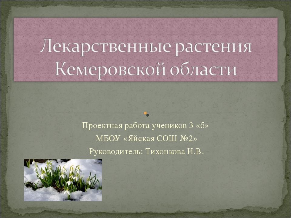 Проектная работа учеников 3 «б» МБОУ «Яйская СОШ №2» Руководитель: Тихонкова...