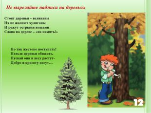 Не вырезайте надписи на деревьях Стоят деревья – великаны Их не жалеют хулига