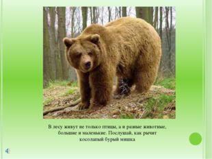 В лесу живут не только птицы, а и разные животные, большие и маленькие. Послу