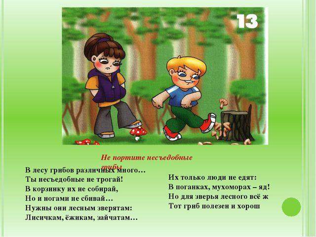 Не портите несъедобные грибы В лесу грибов различных много… Ты несъедобные н...