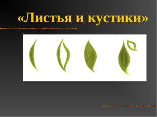 «Листья и кустики»