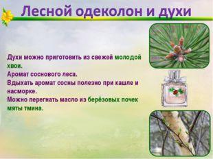 Духи можно приготовить из свежей молодой хвои. Аромат соснового леса. Вдыхать