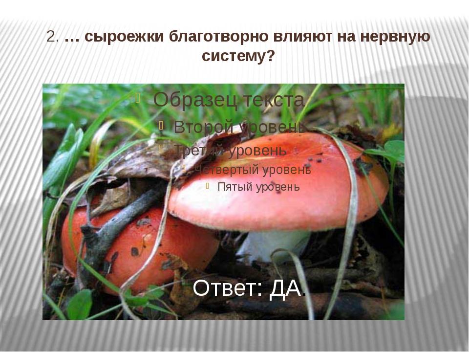 2. … сыроежки благотворно влияют на нервную систему? Ответ: ДА.