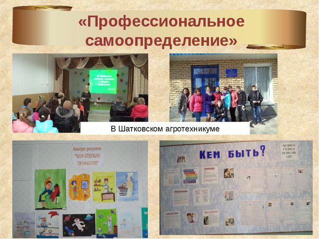 «Профессиональное самоопределение» В Шатковском агротехникуме