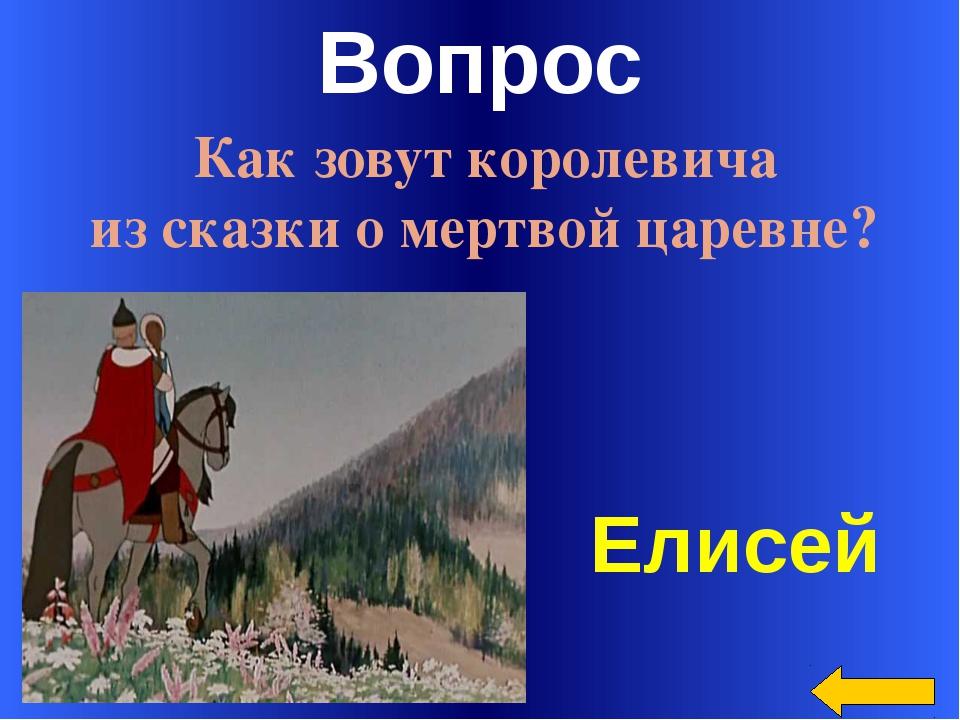 Вопрос Белка песенки поет и орешки все грызет… Welcome to Power Jeopardy © Do...