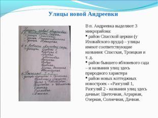 Улицы новой Андреевки В п. Андреевка выделяют 3 микрорайона: район Спасской