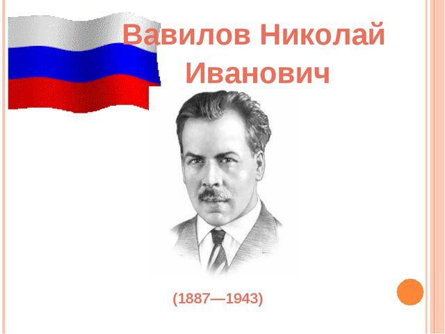 Вавилов Николай (1887—1943) Иванович